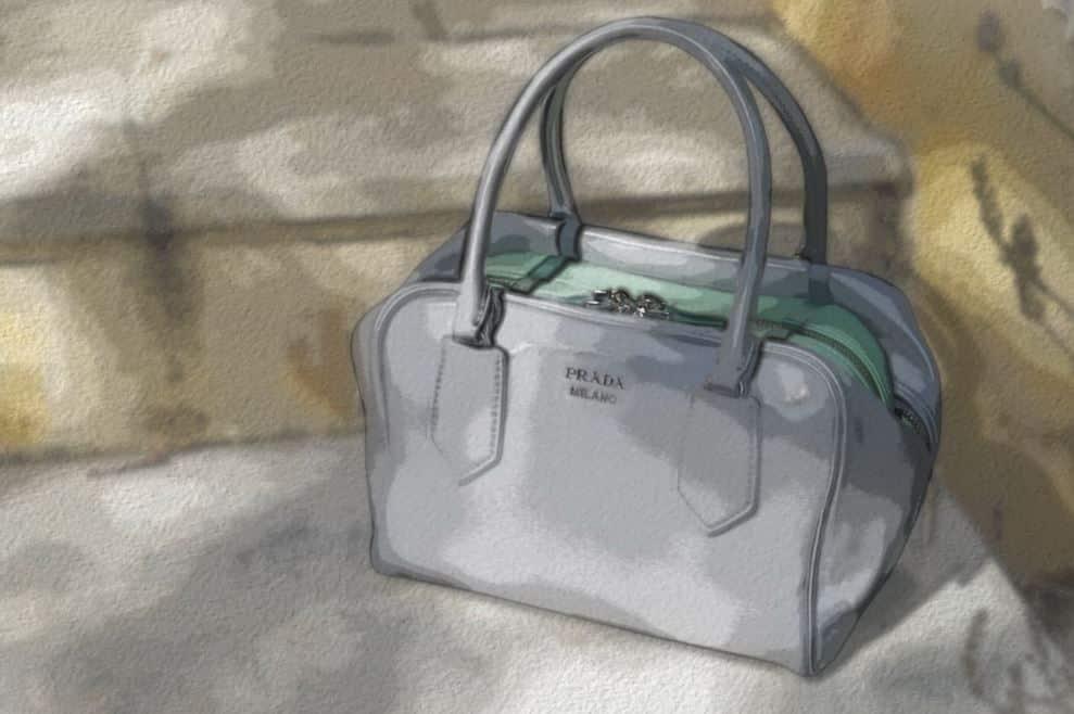 Prada Inside Bag