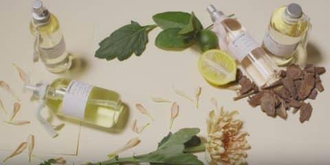 stradivarius-beauty-fragrances